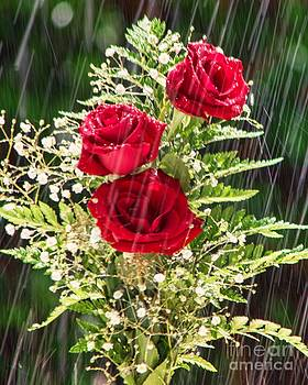 Roses in the Rain by Imani  Morales
