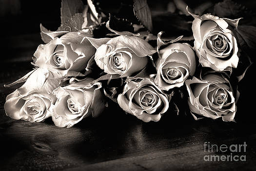 Simon Bratt Photography LRPS - Roses on a table in black and white