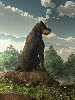 Daniel Eskridge - Rottweiler