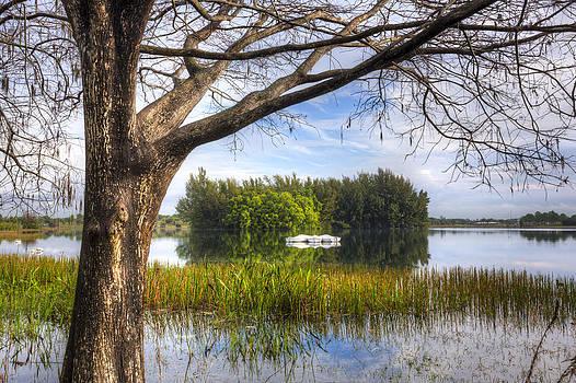 Debra and Dave Vanderlaan - Rowboats at the Lake