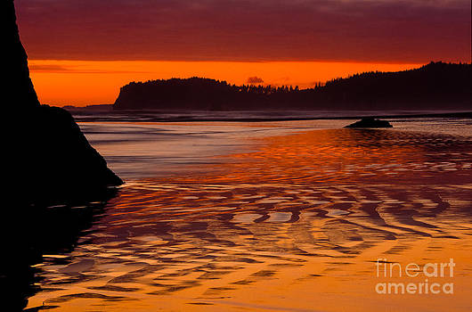 Inge Johnsson - Ruby Beach Afterglow