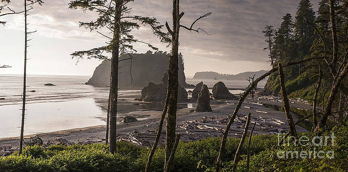 Ruby Beach by Jason Kolenda