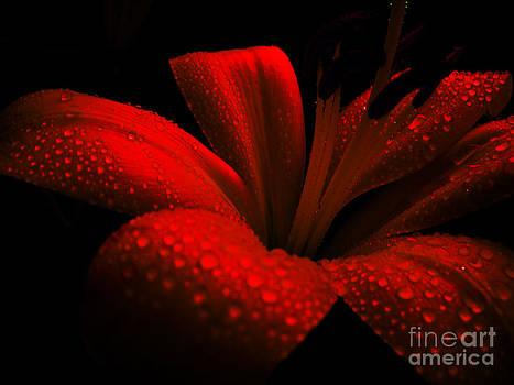 Ruby. by Victoria Kir