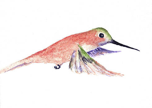 Rufous Hummer by Renee Chastant