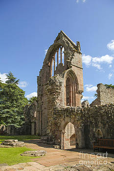 Patricia Hofmeester - Ruined wall of ancient Dryburgh abbey