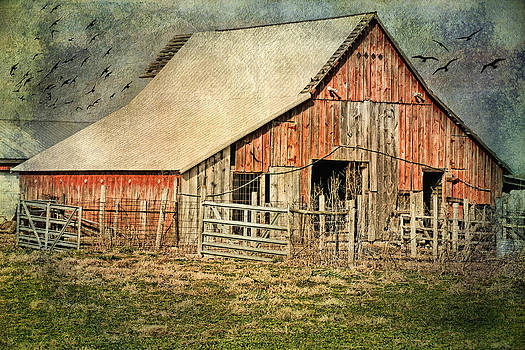 Rural Art by Joan Bertucci