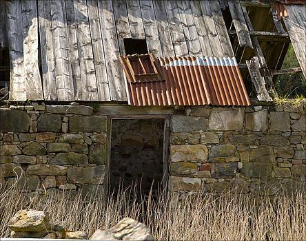 Liz  Alderdice - Rural Decay