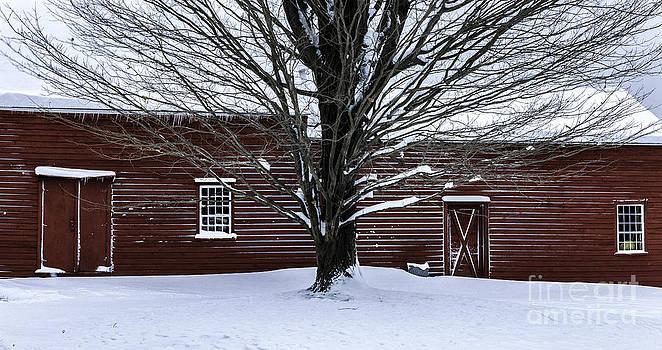 Thomas Schoeller - Rural Farmhouse Simplicity - A Winter Scenic