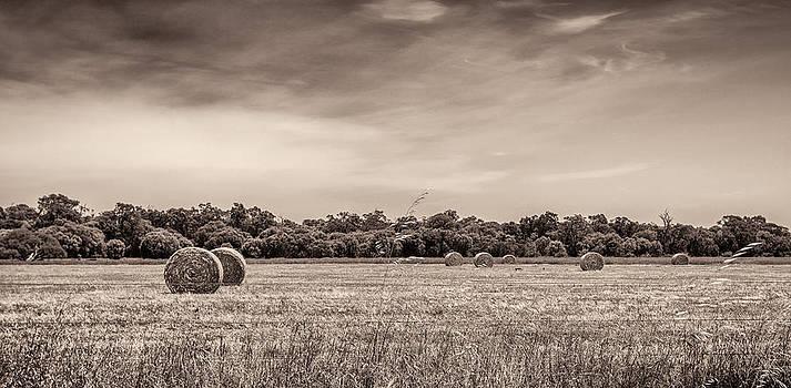 Rural Land by Shari Mattox