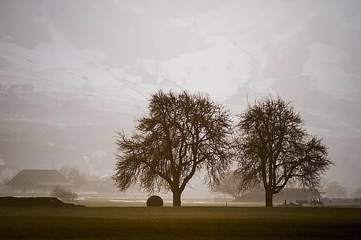 Rural Landscape #4 by Antonio Jorge Nunes