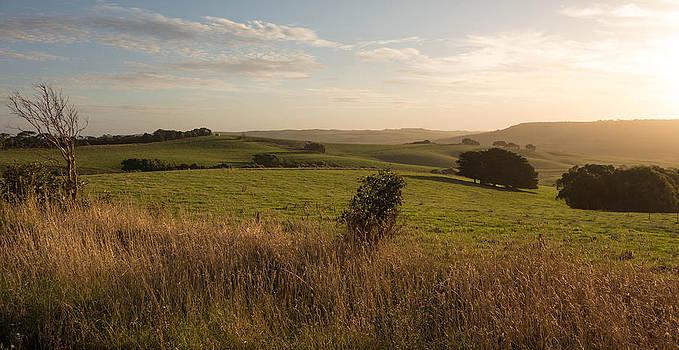 Rural Landscape by Shari Mattox
