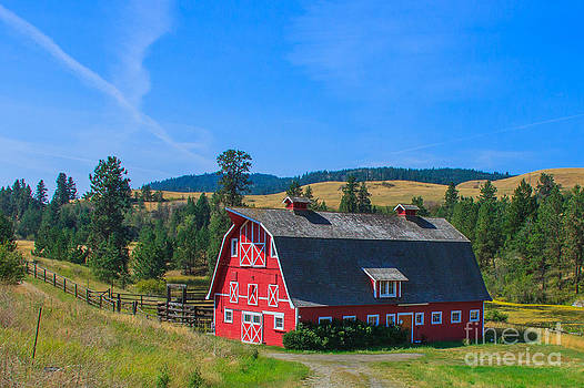 Rural Lifestyle by Nancy Harrison