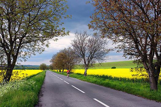 Alex Sukonkin - Rural road with cyclist