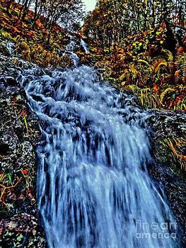 Rushing Falls by Andy Heavens