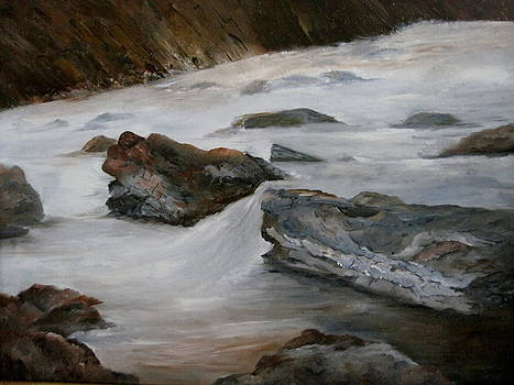 Rushing River by Martha Efurd