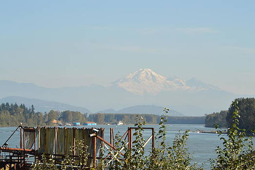 Nicki Bennett - Ruskin View of Mt. Baker