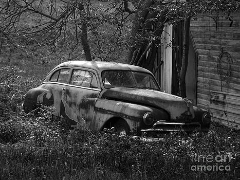 Rusted Beauty by Chad Thompson