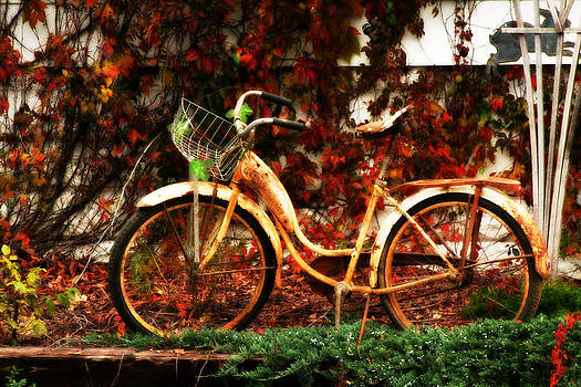 Rusted Bicycle and Autumn Colors by Sarah Yost