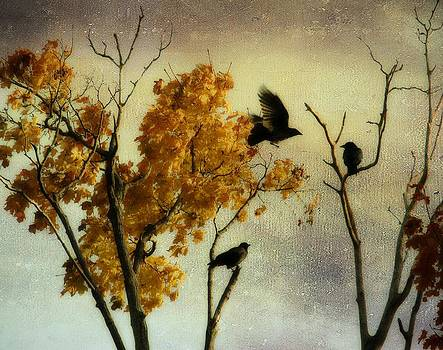Gothicolors Donna Snyder - Rustic Autumn Crows