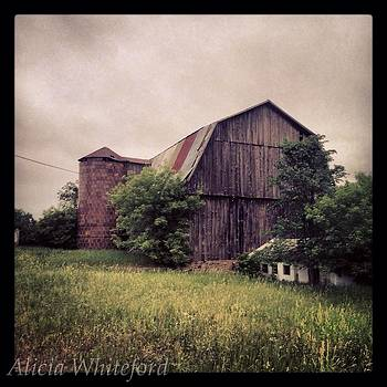 Rustic Barn by Alicia Whiteford