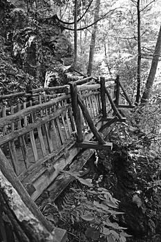 Rustic Bridge by Robert Seidman