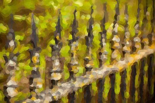 Rustic Fence by Paul Bartoszek
