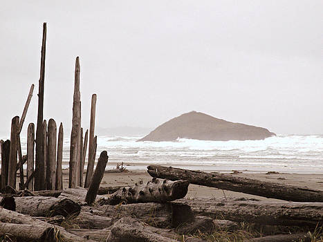 Rustic Formation by Micki Findlay