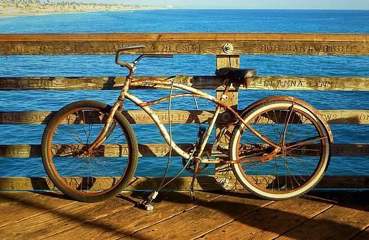 Karyn Robinson - Rusty Bicycle
