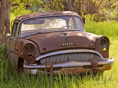 Rusty Buick by Stephen Shub