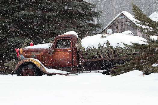 Rusty Dodge - Pine Delivery by Kevin Snider