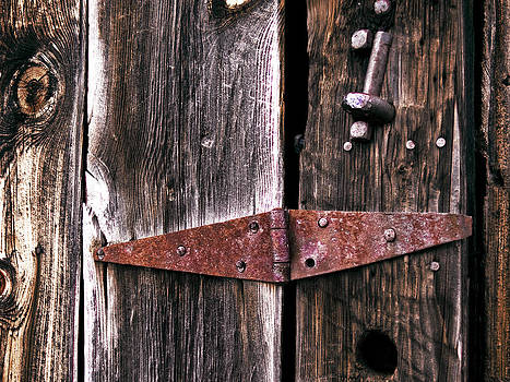 Rusty Hinge by Rod Mathis
