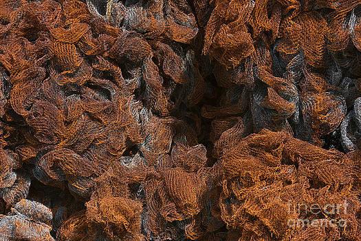 Rusty Metal Net Texture by Kiril Stanchev