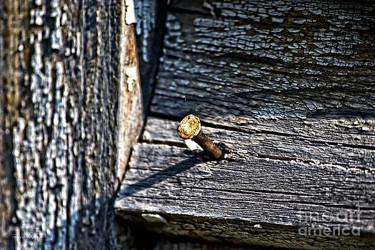 Rusty Old Nail by Ms Judi