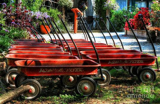 Mel Steinhauer - Rusty Old Wagons