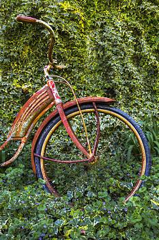 Debra and Dave Vanderlaan - Rusty Wheel