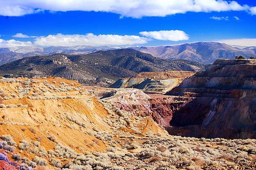 Ruth Northern Nevada by Gunter Nezhoda