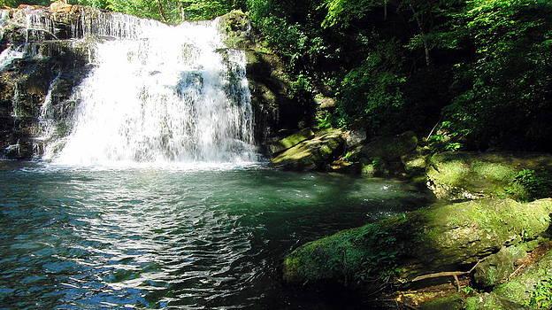 Rutledge Falls by Bo  Watson
