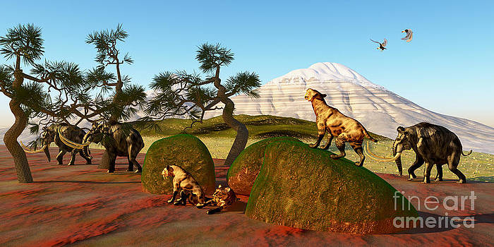 Corey Ford - Saber Toothed Cat Family