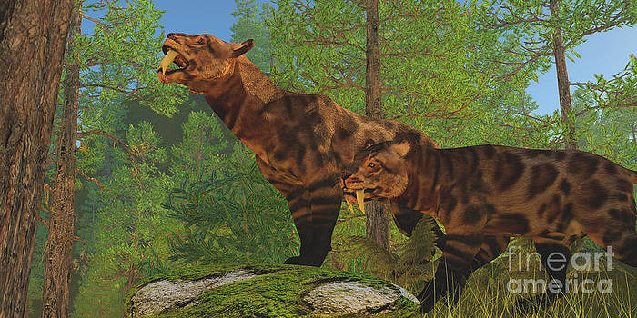 Corey Ford - Saber-Toothed Cat Forest