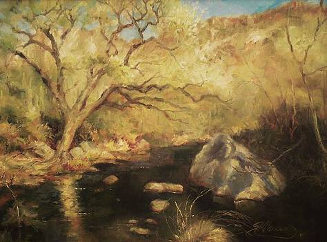 Sabino Canyon by Sharen AK Harris