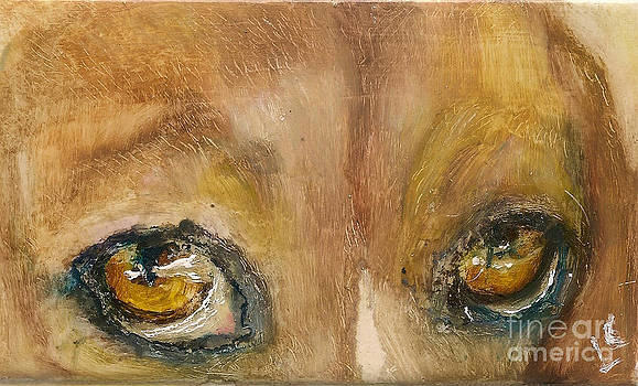 Sad Eyes by Donna Chaasadah