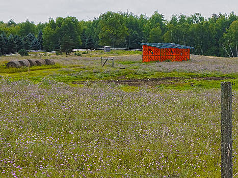 Safety sign pasture by Kevin Snider