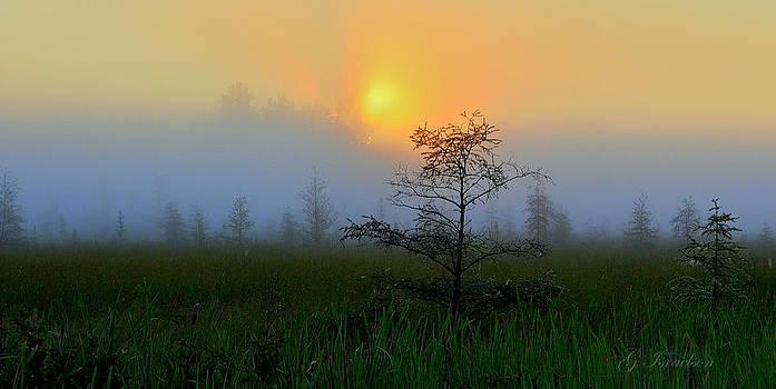 Saginaw Sunrise by Gregory Israelson