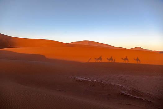Sahara by Pedro Cano