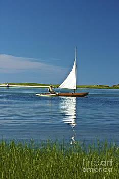 Amazing Jules - Sail