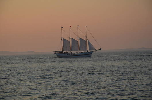 Sail at Sunset by Brett Geyer