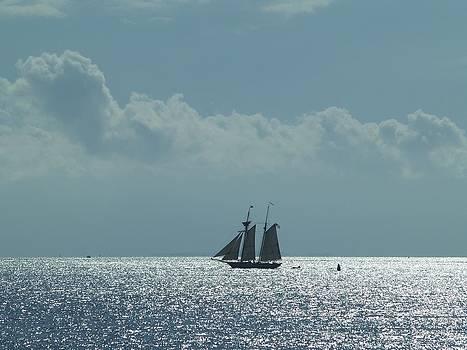 Sail Away by Patricia McKay