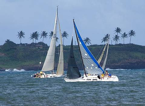 Sail Boat Race by Bonita Hensley