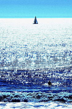 Sailboat and Swimmer by Brian D Meredith