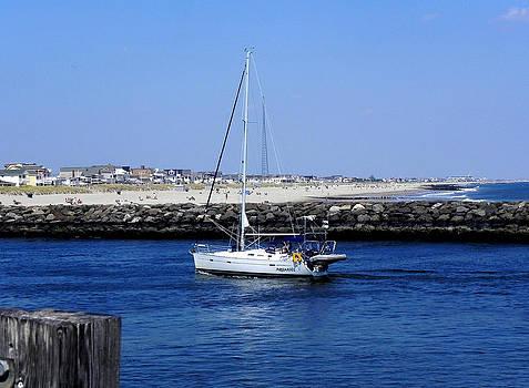Sailboat at shore by Allen Beilschmidt